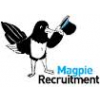 Magpie Recruitment Ltd