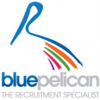 Blue Pelican Recruitment