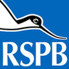 The Royal Society for the Protection of Birds