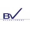 BV RECRUITMENT LTD