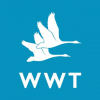 WWT Limited
