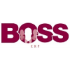 Boss ERP Consulting